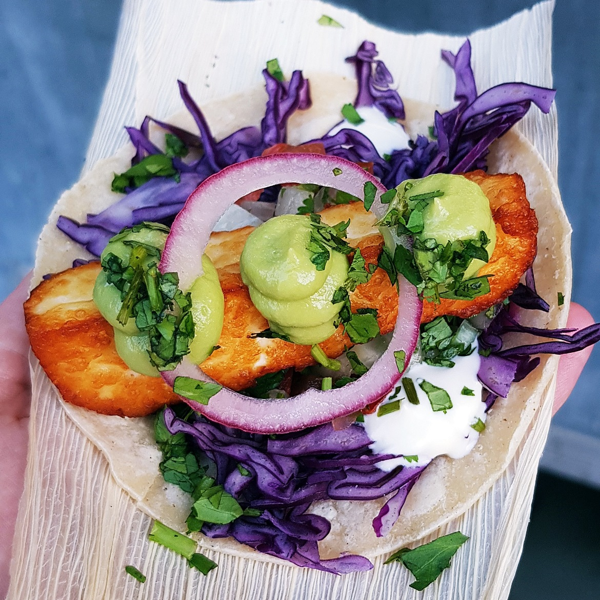 Halloumi taco at Leeds Food and Drink Festival - June 2018 Monthly Recap by BeckyBecky Blogs