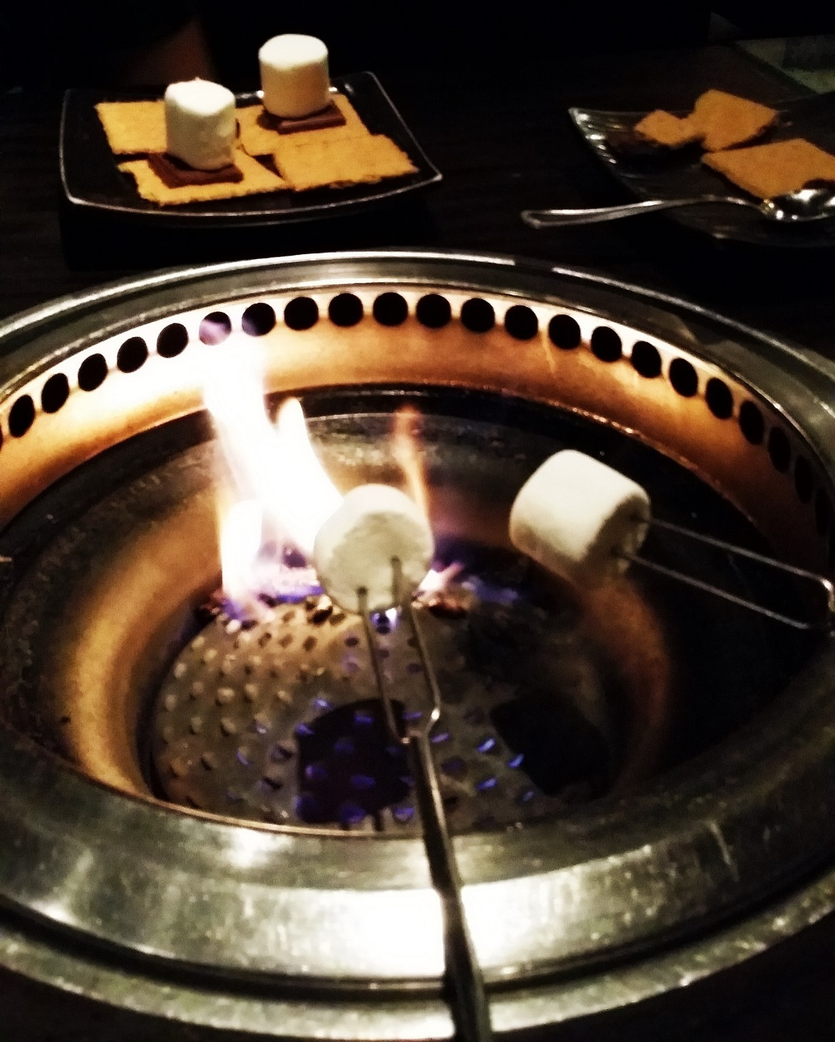 Burning smores - New York New York, travel blog by BeckyBecky Blogs